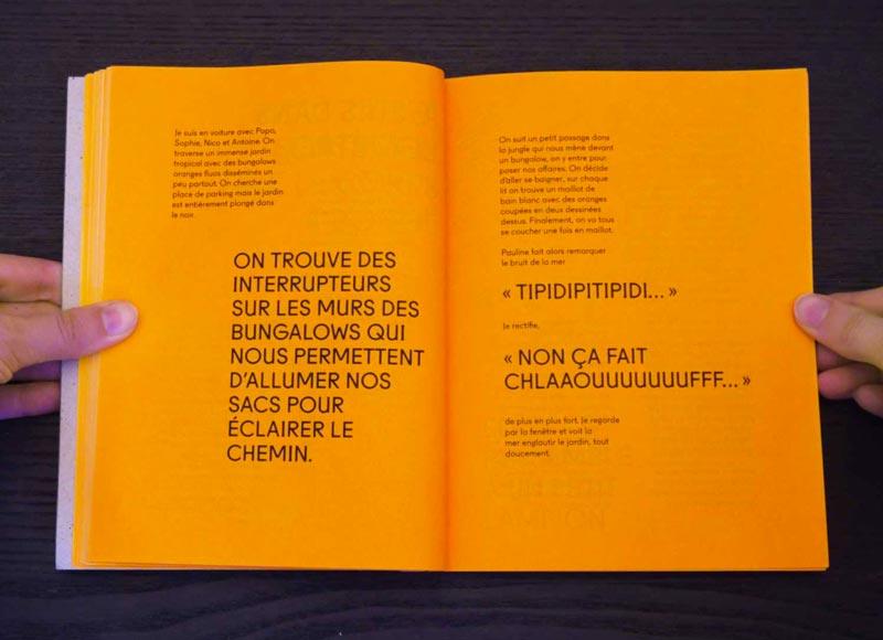 Juliette Seban – Il change sa tête et met un masque – Illustration livre des rêves – le jardin tropical