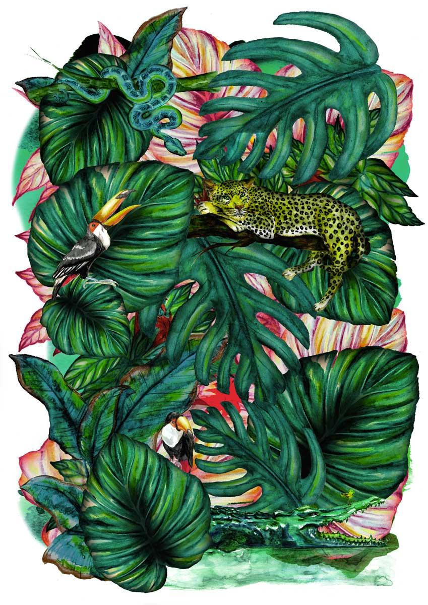 Juliette Seban – Jungles